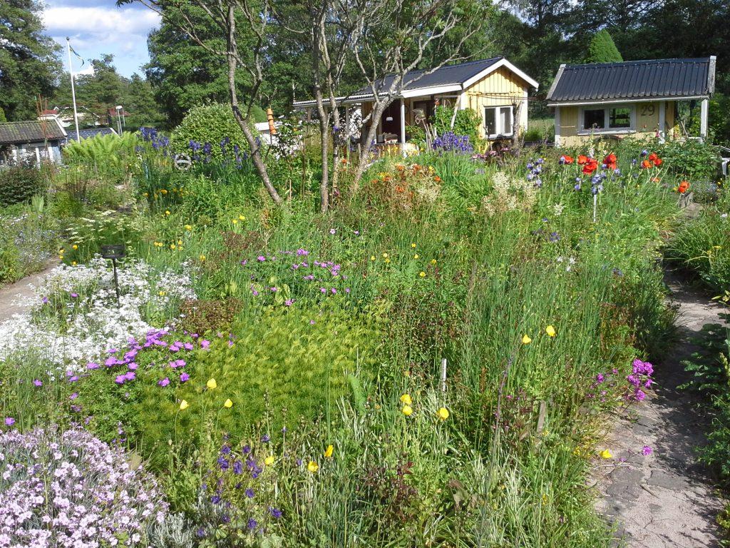 Skötselplan för trädgård, 10 års erfarenhet